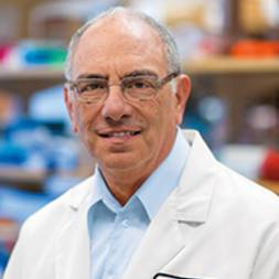 Photo of Howard L. Weiner,  MD