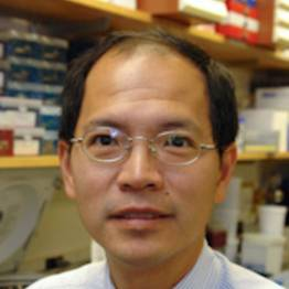 Photo of Kwok Kin Wong,  MD, PhD