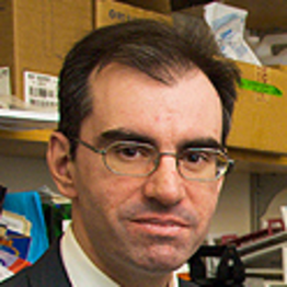 Photo of Constantine S. Mitsiades,  MD, PhD