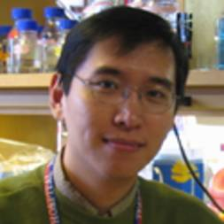 Photo of Lee Zou,  PhD