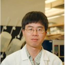 Photo of Qiufu Ma,  PhD