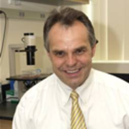 Photo of Hanno R. Hock,  MD, PhD