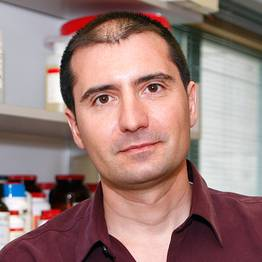 Photo of Bernardo Sabatini,  MD, PhD