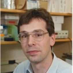 Photo of Martin Sattler,  PhD