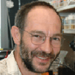 Photo of Norbert Perrimon,  PhD