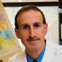 Photo of David A. Frank,  MD, PhD
