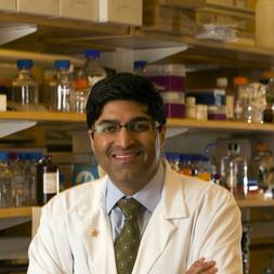 Photo of Sridhar Ramaswamy,  MD