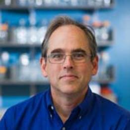 Photo of Peter Sorger,  PhD