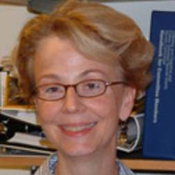 Photo of Denise Faustman,  MD, PhD